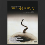 Reviewing the Korean Film Archive: The Day a Pig Fell Into the Well